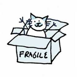 Siamese Cat coming out of a box labelled fragile. Illustration by Lynn Chang.