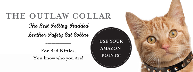 The Famous Kitty Planet Studded Outlaw Leather Safety Cat Collar