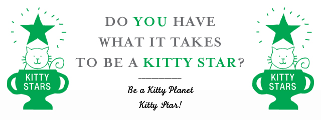 kitty-star-ad